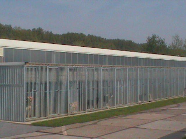 Residencias caninas prefabricadas