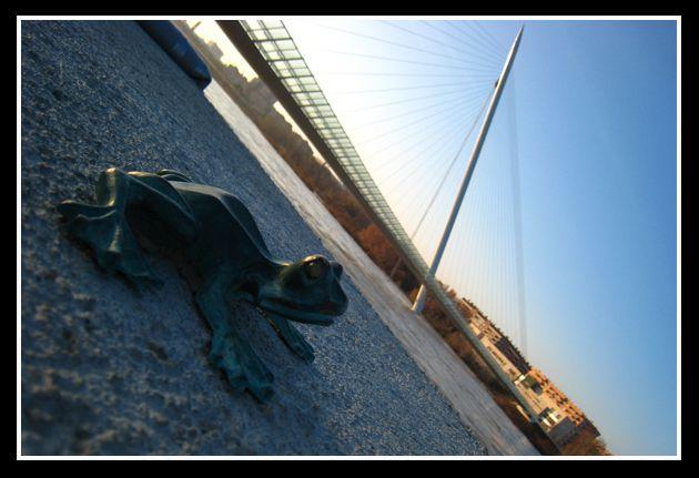 Ebro_2-14-02-09