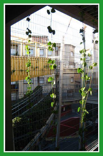JardinDelicias_01