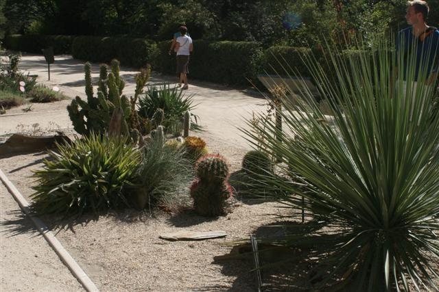 botanico%2012