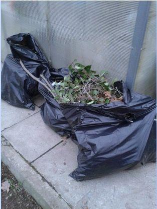 compostar-gardencenterejea-3849
