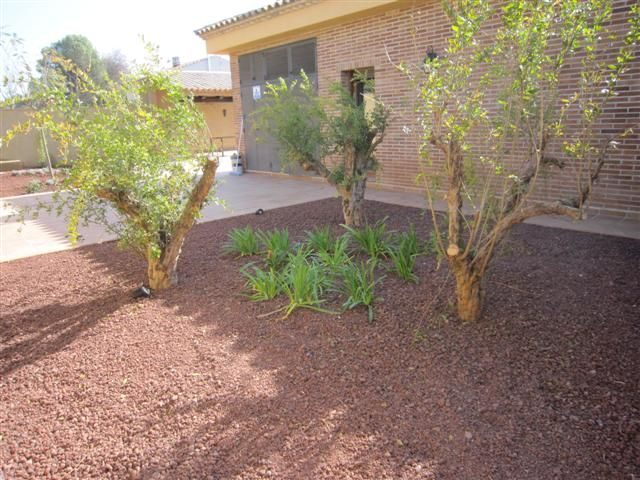 Un jard n catal n en arag n blog garden center ejea - Garden center ejea ...