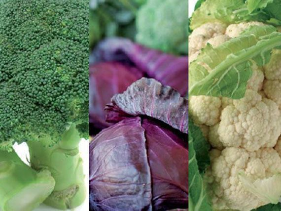 hortalizas-de-verano-334345345