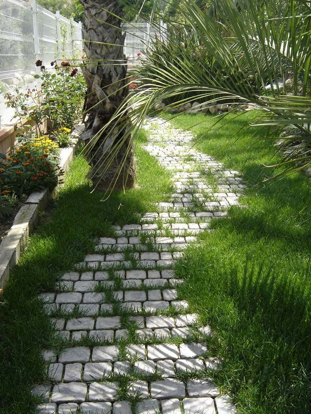 jardincillos (1)