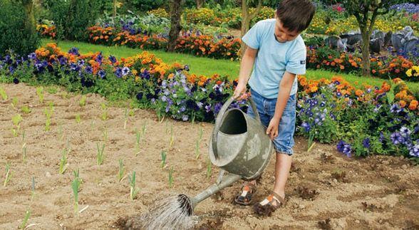 sembrar-con-los-ninos-gardencenterejea-893745(1)