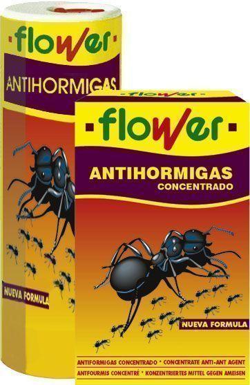 Hormigas en el jard n en la cocina blog garden center ejea for Hormigas en el jardin