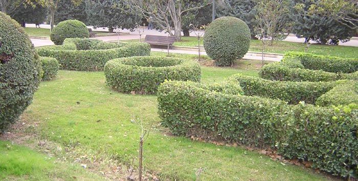 Jardin%20frances%2001