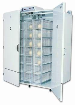 incubadora01