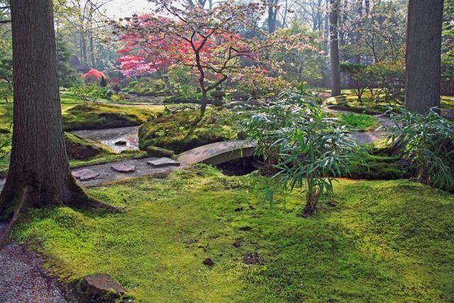 jardin_japones%202