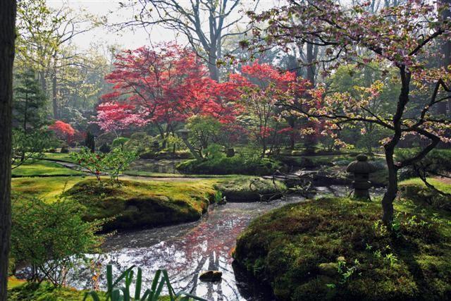 jardin_japones%203