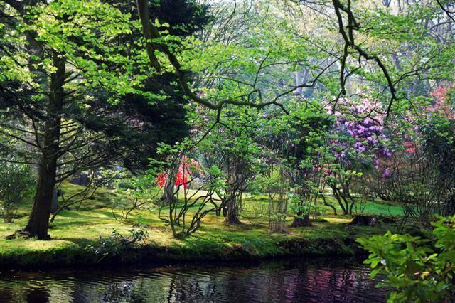 jardin_japones%204