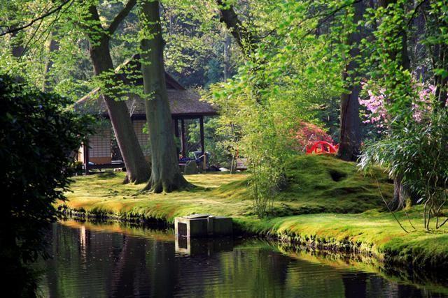 jardin_japones%206