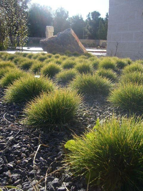 El jardin de los cinco sentidos blog garden center ejea - El jardin de los sentidos ...
