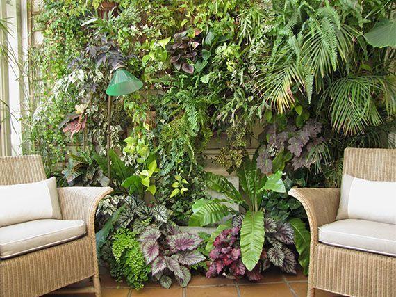 jardines-de-invierno-gardencenterejea-37485