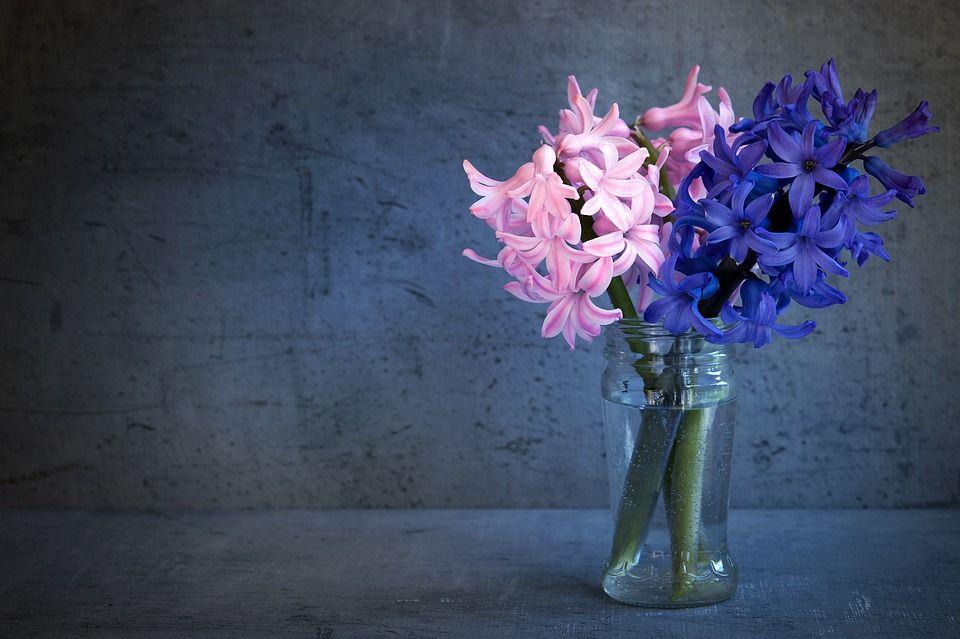 flores-cortadas