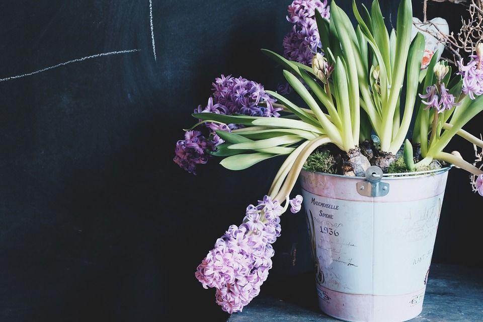 decorar-flores