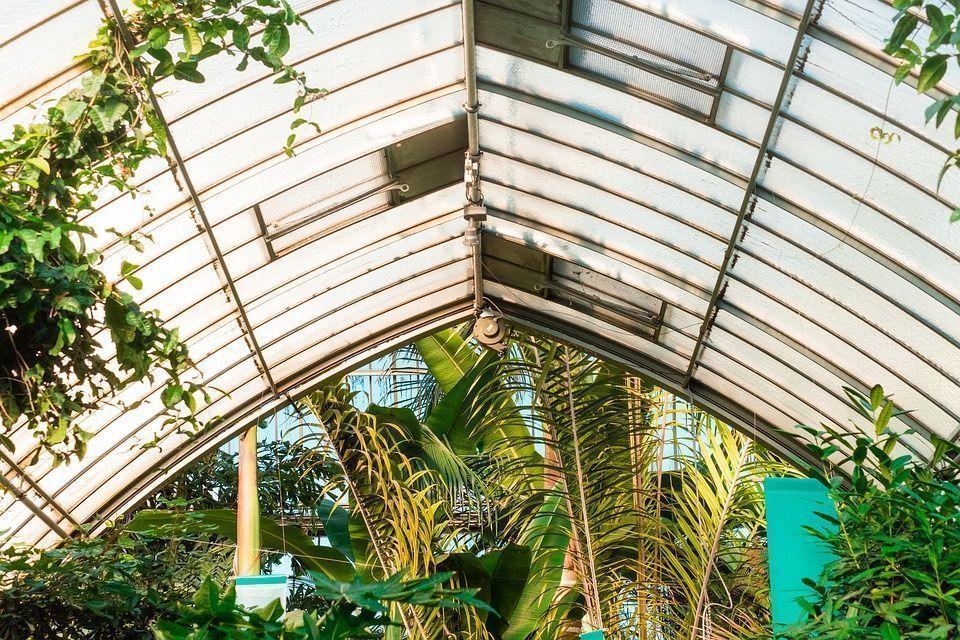 green-house-1209313_960_720