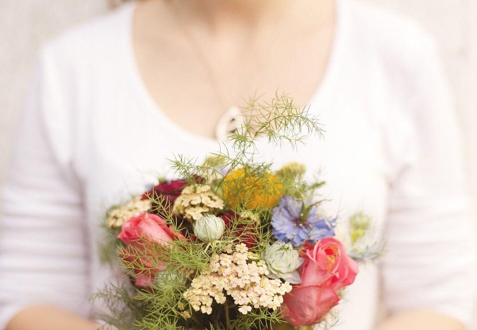 Obsequiar plantas flores