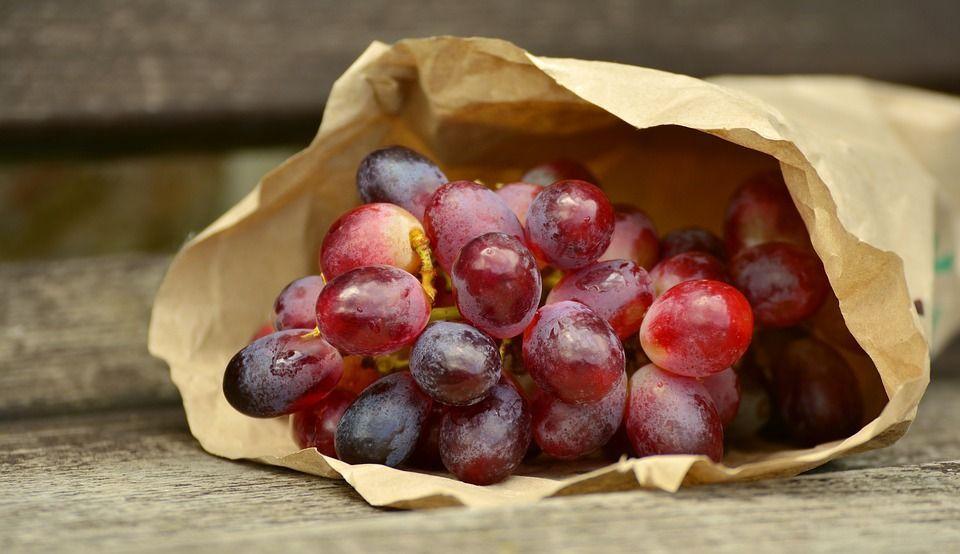 Proteger uvas