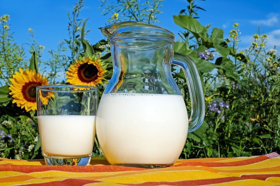 Fungicida a base leche