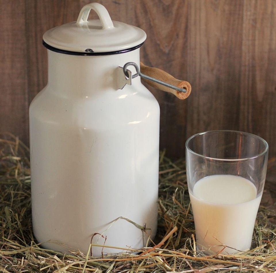 Fungicida leche