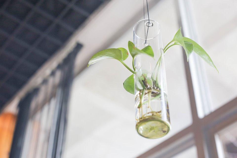 Jardinera botellas cristal