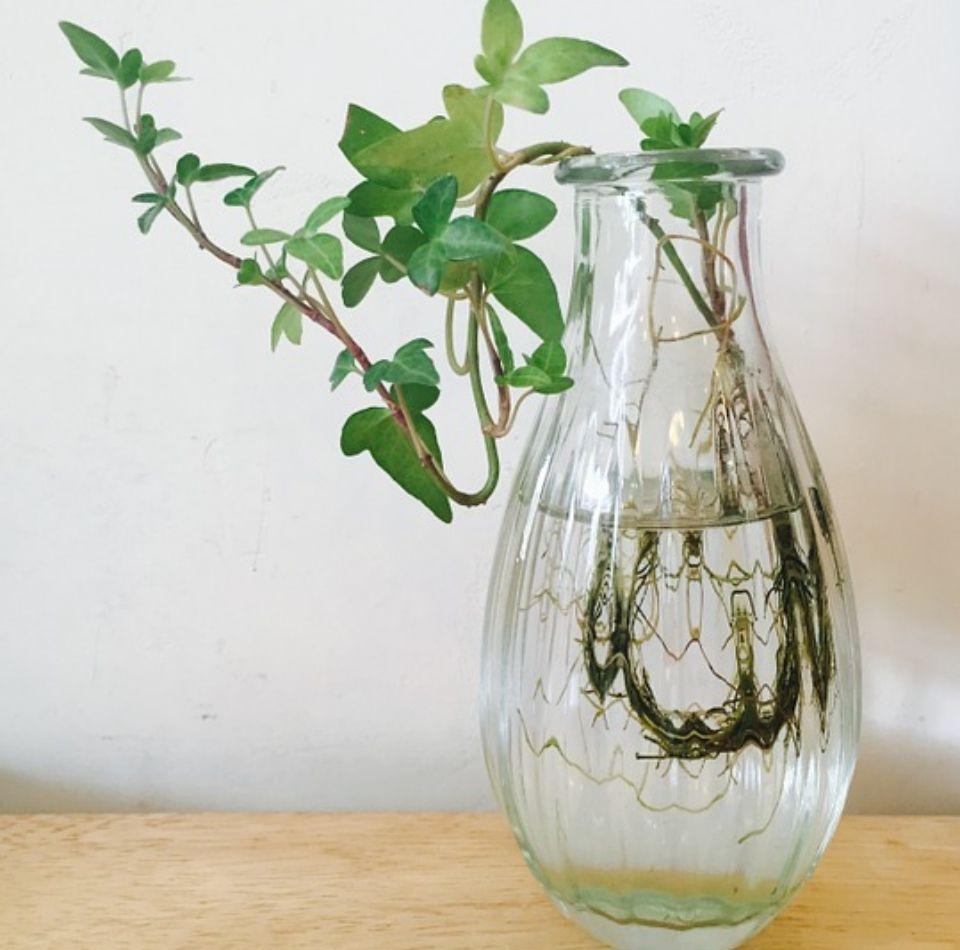 Dorable Pulidor De Uñas De Cristal Embellecimiento - Ideas Para ...