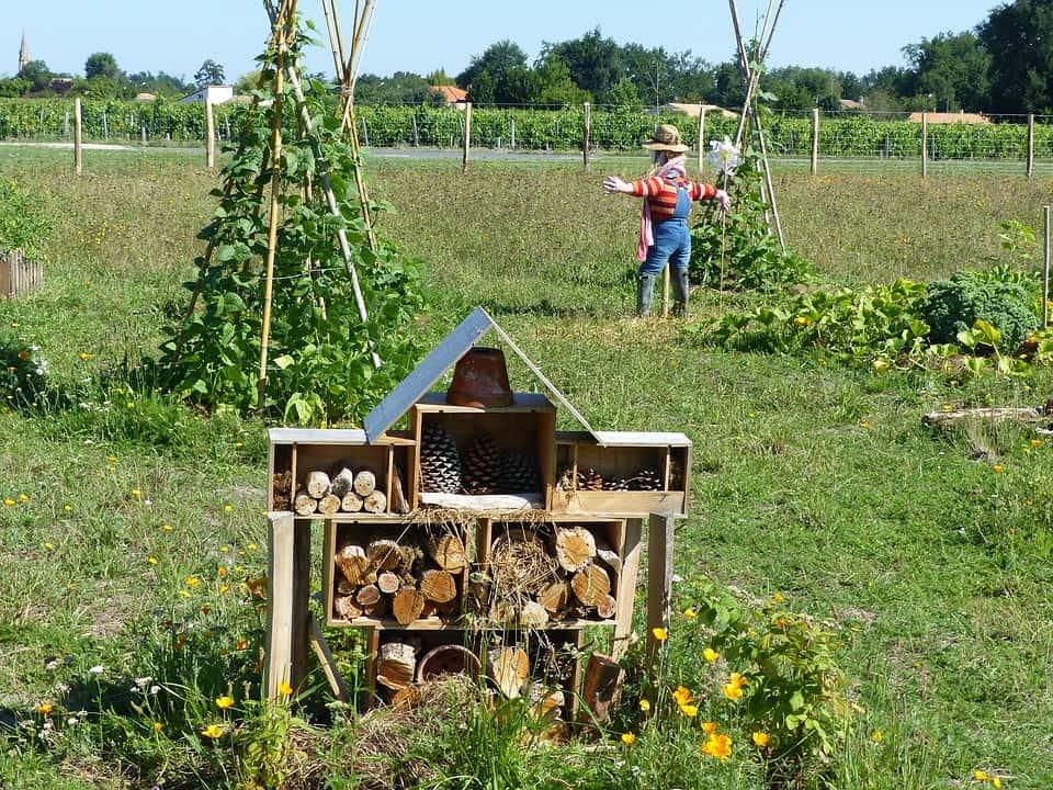 Sistema permacultura