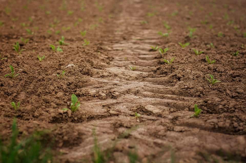 Labranza de los suelos