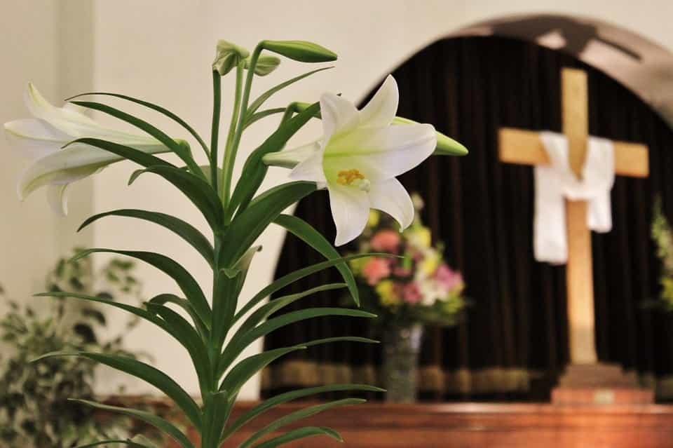 Iglesia-flor