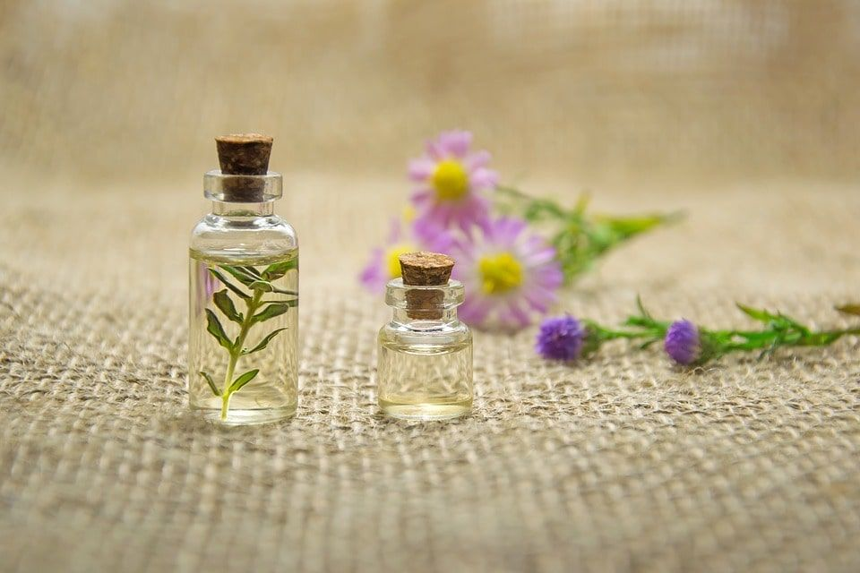 Equinacea-flor-medicinal