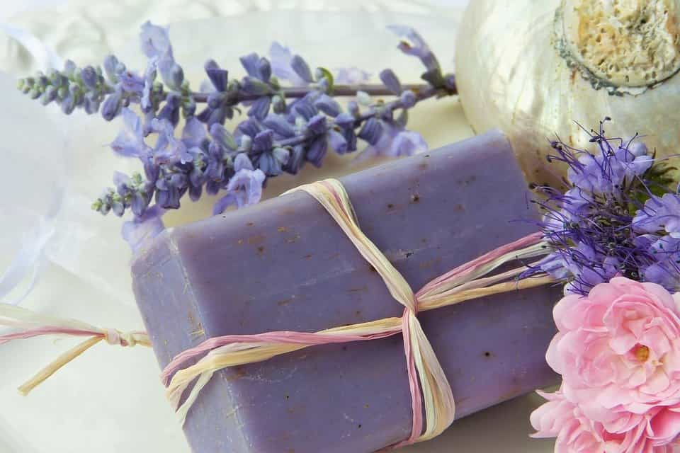 Lavanda-flor-medicinal