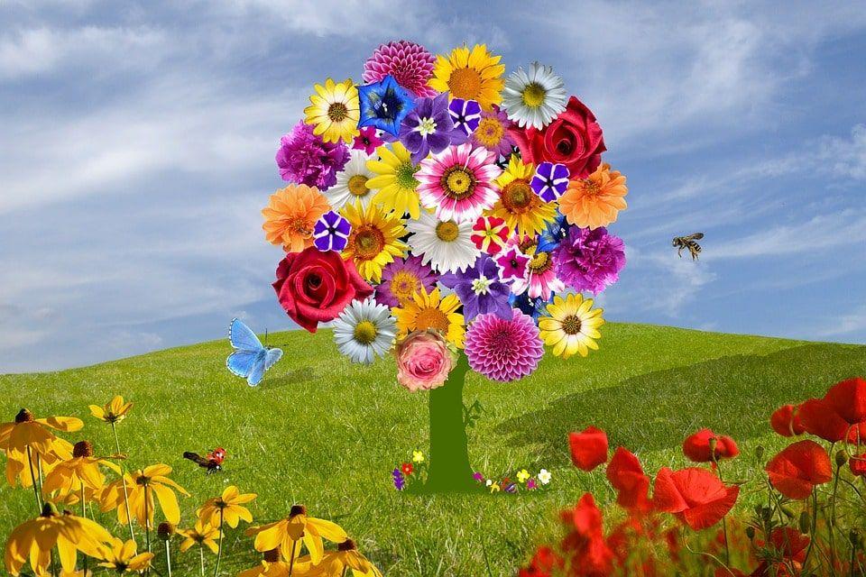 Leyendas flores