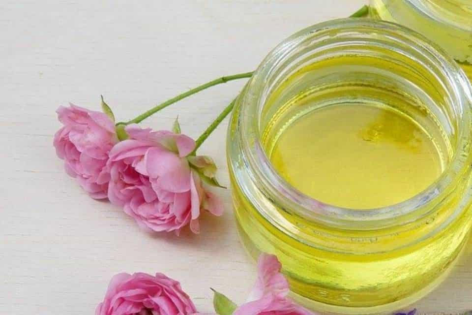 Rosa-flor-medicinal