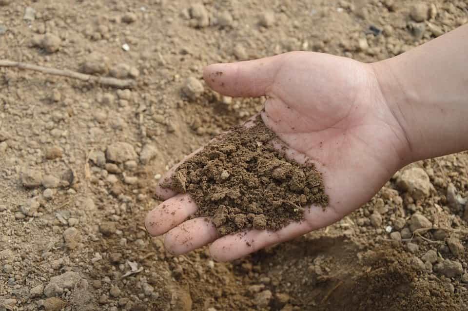 ustrato-viejo-suelo-arcilloso