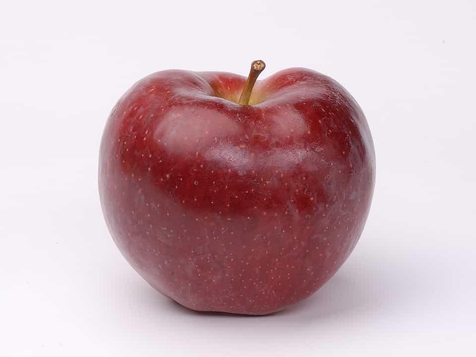 Tipos-manzano