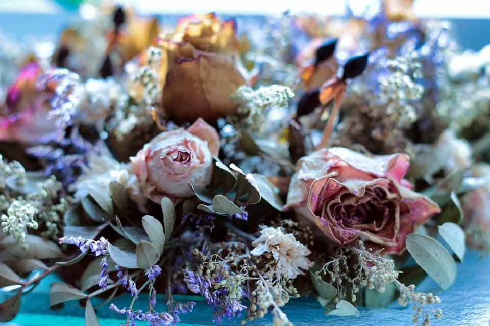 Cuidar flores preservadas
