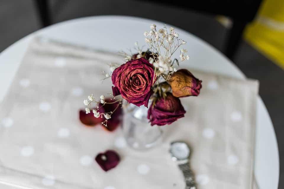 Flores-preservadas-ideas