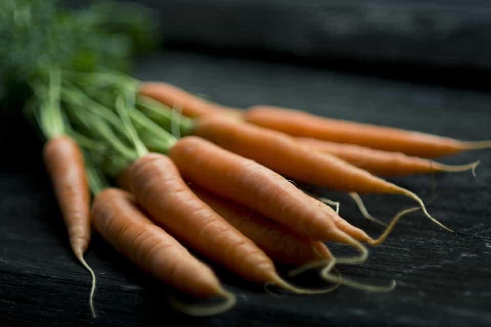 Hortaliza-zanahoria